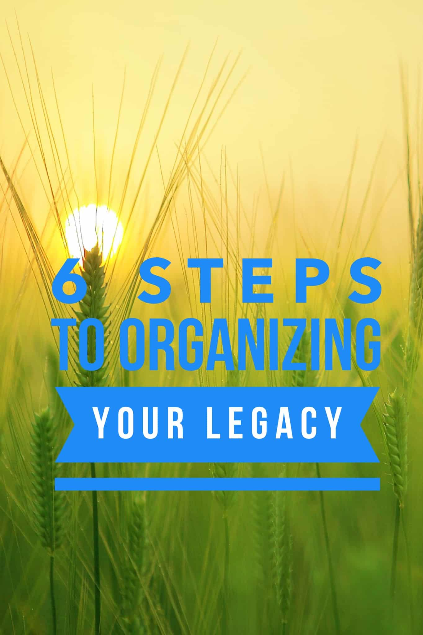 6 Steps to Organizing Your Legacy Title